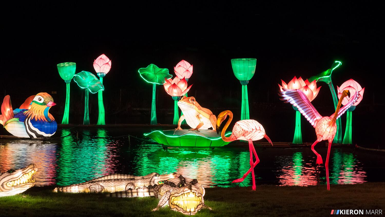 Longleat Festival of Light 2014 - Illuminated Lake
