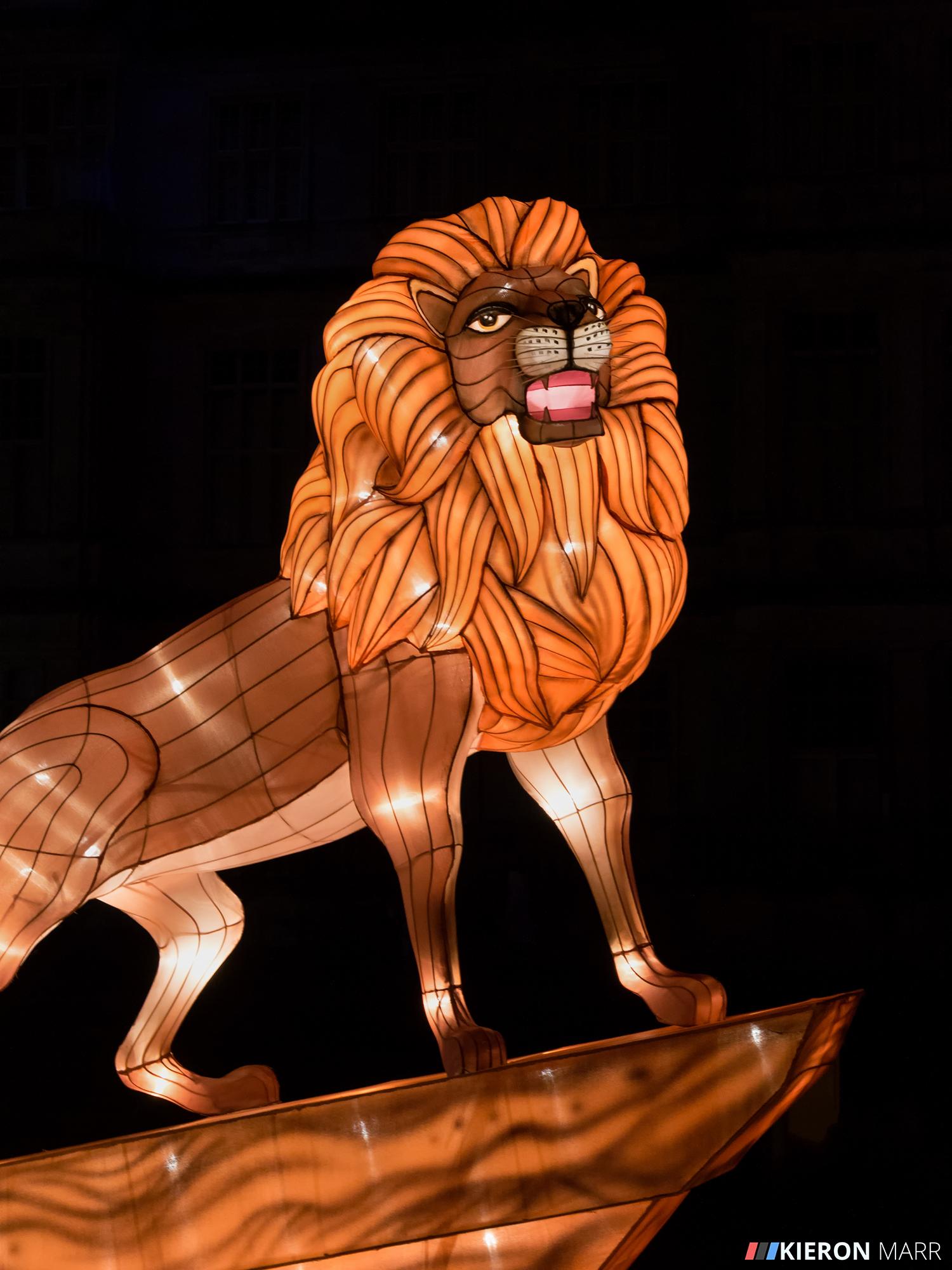 Longleat Festival of Light 2014 - Lion