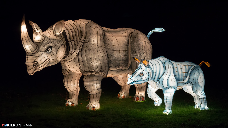 Longleat Festival of Light 2014 - Rhino Family